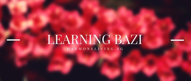 Read BaZi Charts – BaZi Reading for Beginners
